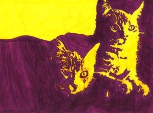 maggie cats 1